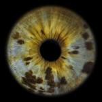 Occh-IO Eye-I Annalaura di Luggo